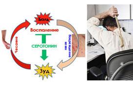 Зуд, чесание, боль - исследование мозга