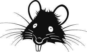 Крысы телепаты