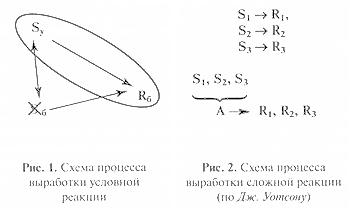Схема процесса выработки условной реакции. Схема процесса выработки сложной реакции (по Уотсону)