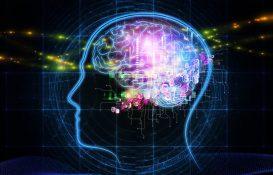 Новая теория памяти человека MeshCODE