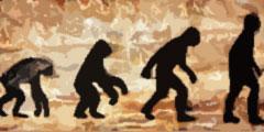 Эволюция остановилась